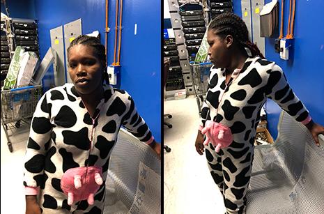 Udderly Nuts: Walmart Thief Dressed As Cow | The Smoking Gun