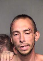 Arrested for trespass, resisting arrest, and indecent exposure.