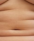 Fat roll