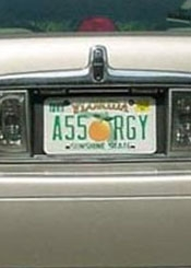 Ass Orgy License Plate