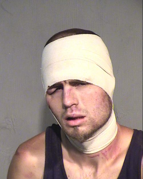 Arrested for endangerment, burglary, resisting arrest.