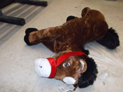 Man, 20, Cops Plea To Lewd Act With Stuffed Horse Inside Walmart
