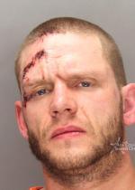 Arrested for strangulation, domestic violence.