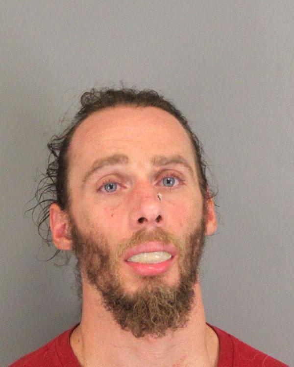 Arrested for malicious injury, larceny.