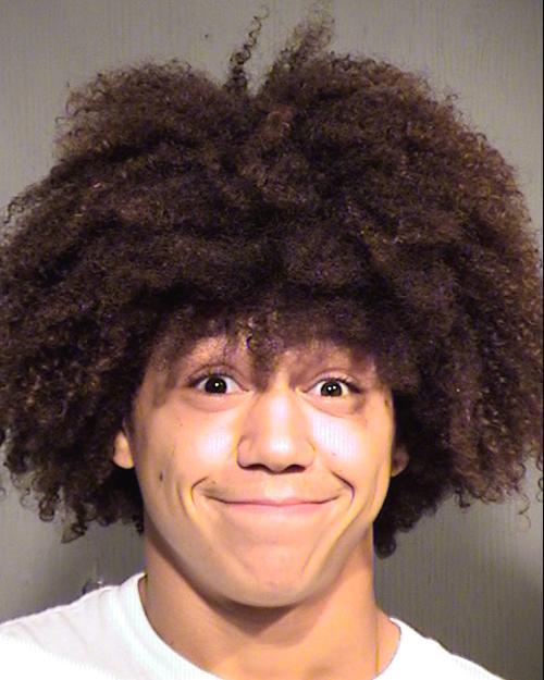 Arrested for assault, criminal damage.